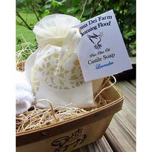 Cleansing Flood Castile Soap with Large Shell