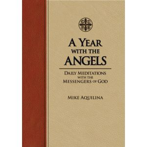 A Year with the Angels: Daily Meditations